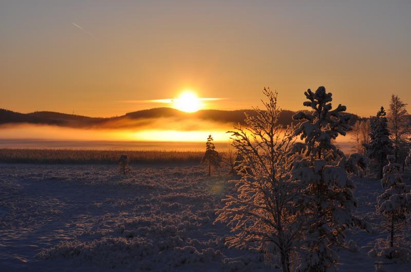 Vader en zoon Groepsreis Lapland