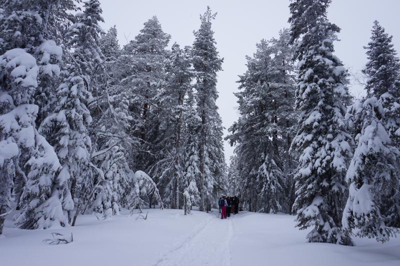 Lapland groepsreizen