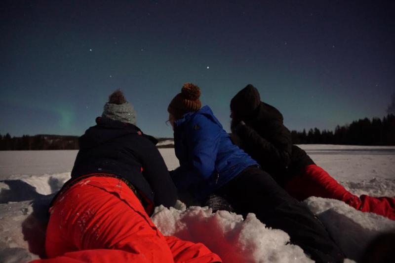 Noorderlicht bekijken