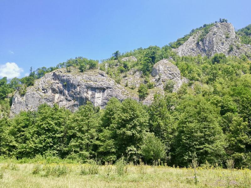 Natuur omgeving