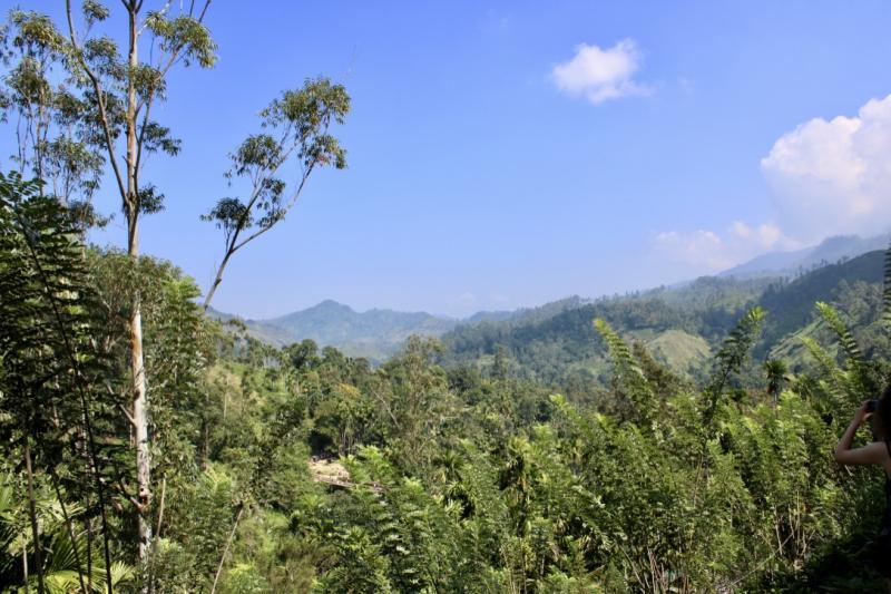 Sri Lanka landschap