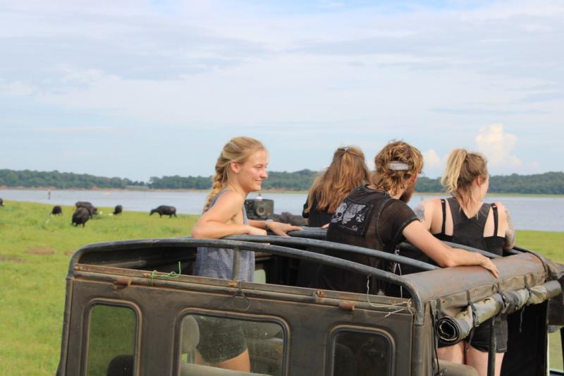 Yala National Park wildlife safari