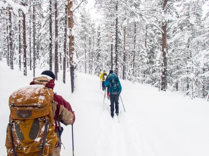 Cross country skiing in Noorwegen