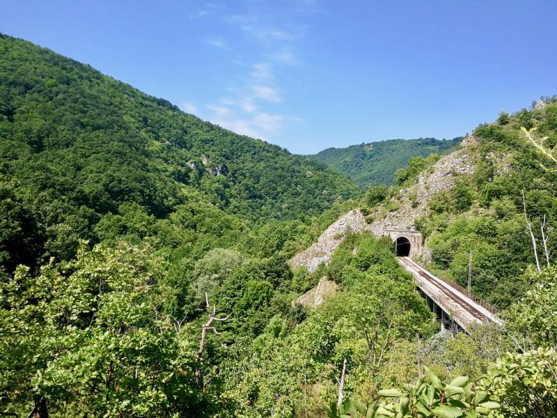 De natuur van Servie