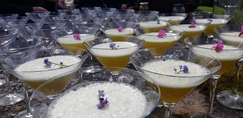 Gin tasting met natuurlijke ingrediënten