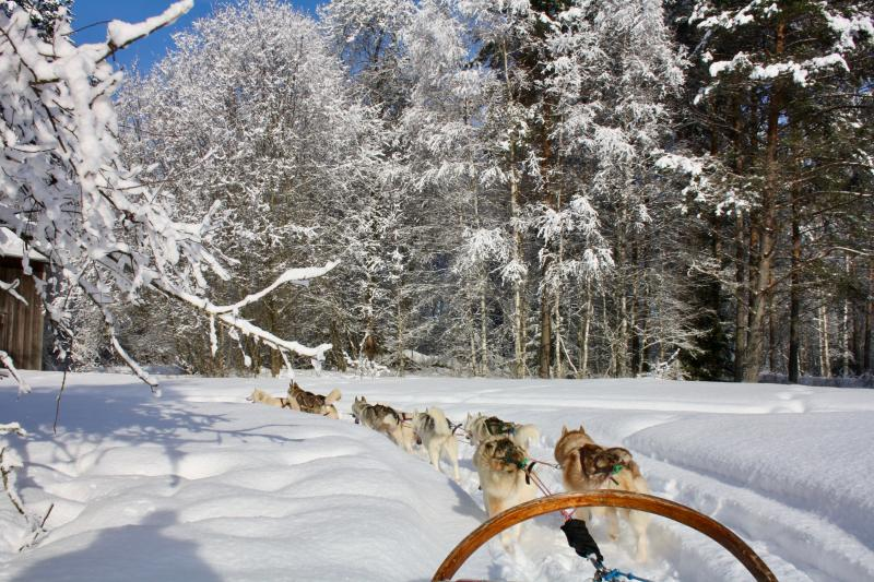 Husky tocht