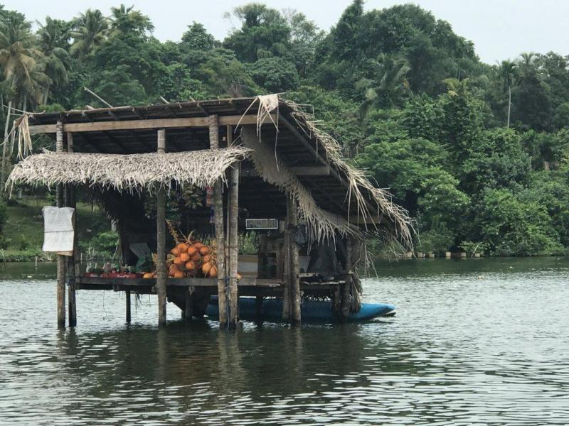 Single reis Sri Lanka