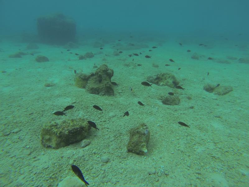 Kroatie onder water