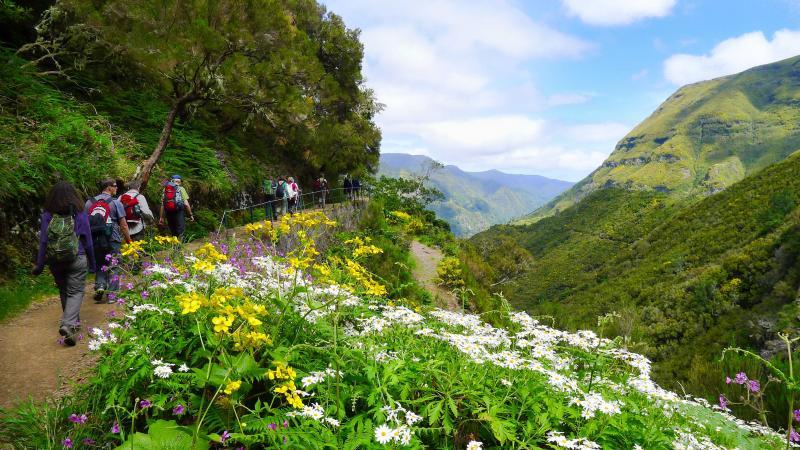 Madeira wandelvakantie