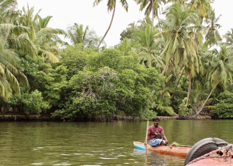 Natuur in Sri Lanka