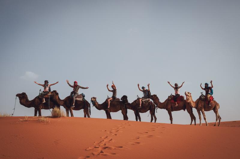 Rit op kameel woestijn
