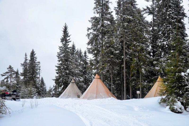 Tipi kampement