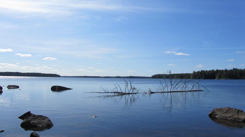 Zweden groepsreis kano