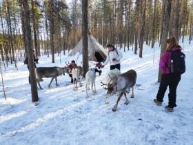 Actieve winter groepsreis Lapland