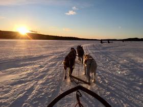 Actieve winter groepsvakantie Lapland
