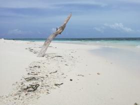 Groepsreis Malediven