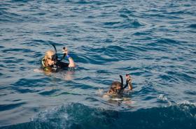 Groepsreizen Malediven