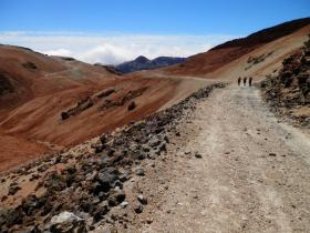 Groepsvakantie Tenerife