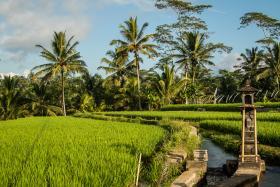 Jongerenvakantie Bali