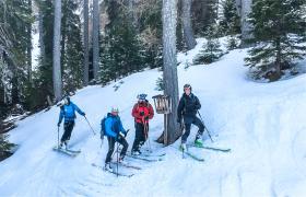 Learn to Ski Slovenië singlereizen