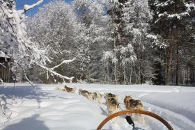 Zweden wintervakantie